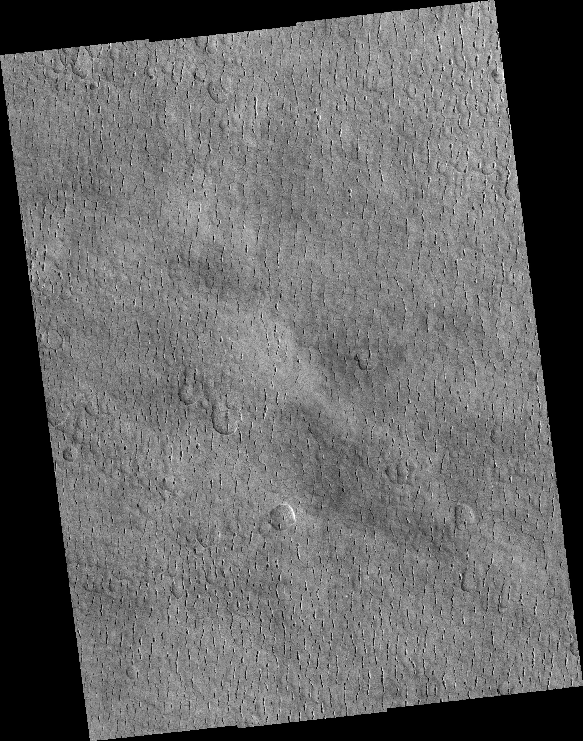 Pits, Cracks, and Polygons in Western Utopia Planitia